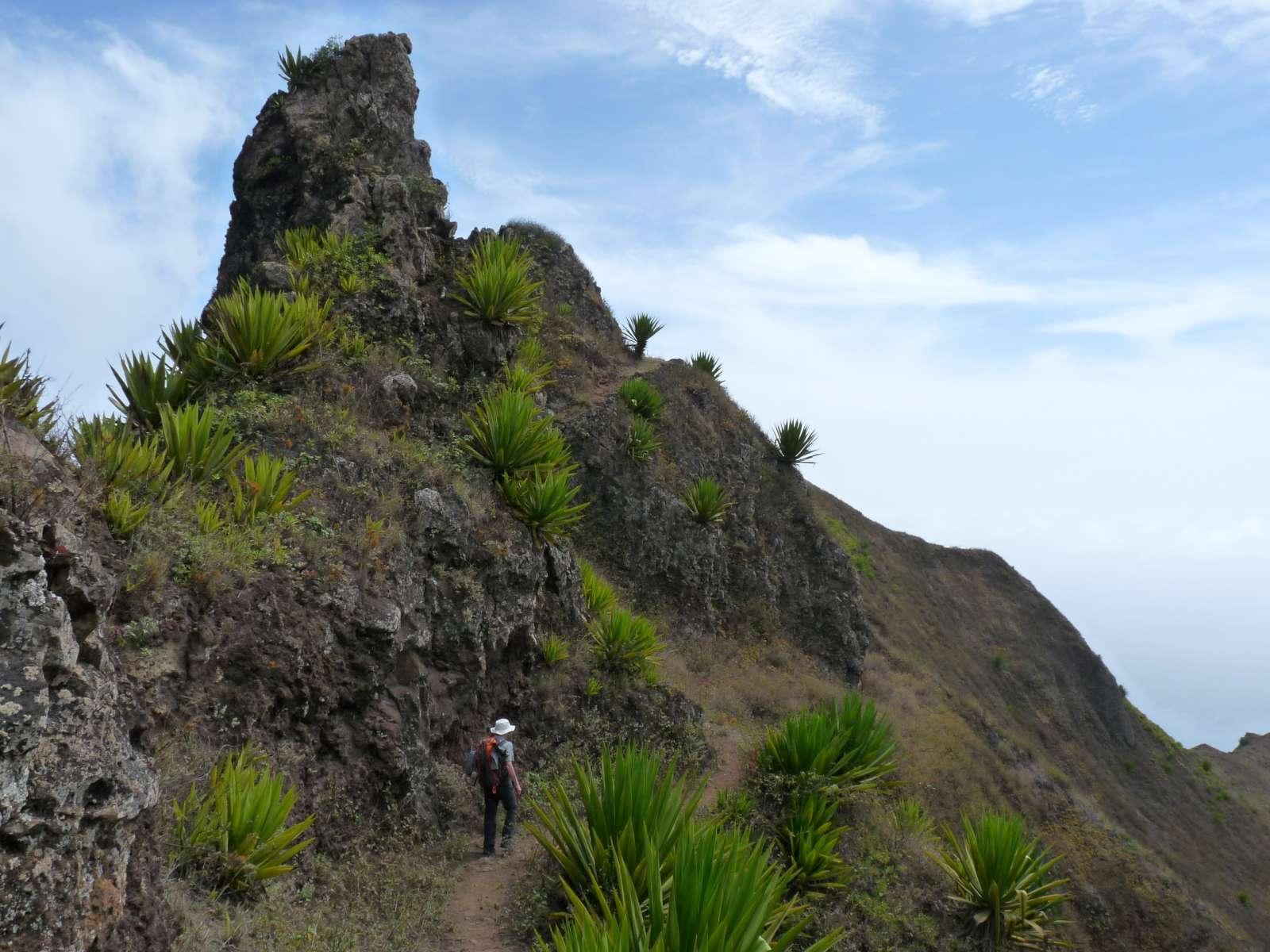 L'excursion commence à Cova, cratère transformé en champs, puis débute la fameuse randonnée aux 77 virages par des chemins sinueux à travers la vallée sur l'île de Santo Antão