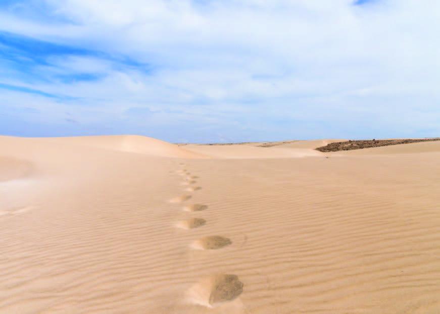 Visite de Boa Vista au Cap-Vert, l'île des dunes, l'île paradisiaque à la vaste étendue de plages considérées parmi les plus belles du monde