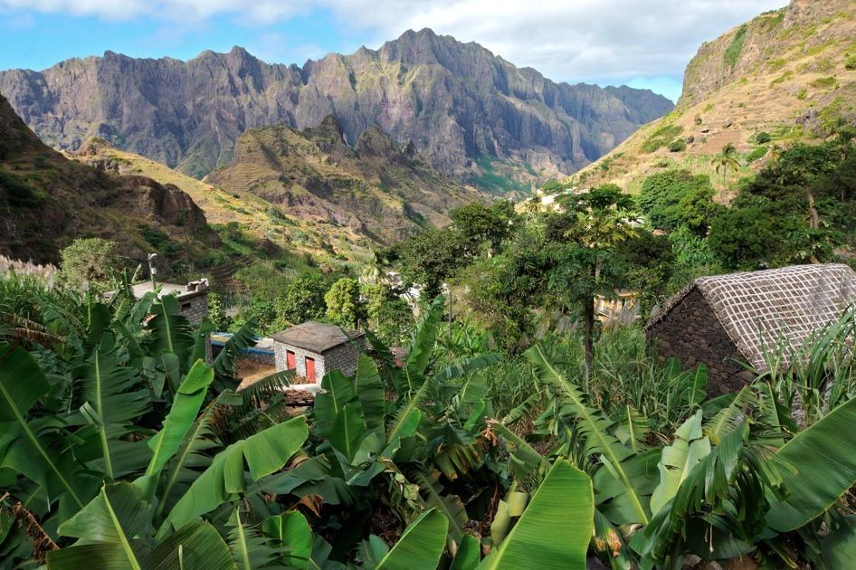 Accompagné d'un guide spécialisé, ballade à travers les plantations d'igname, de papayes et de mangues, pour arriver à une cascade située à 250 mètres au-dessus du niveau de la mer