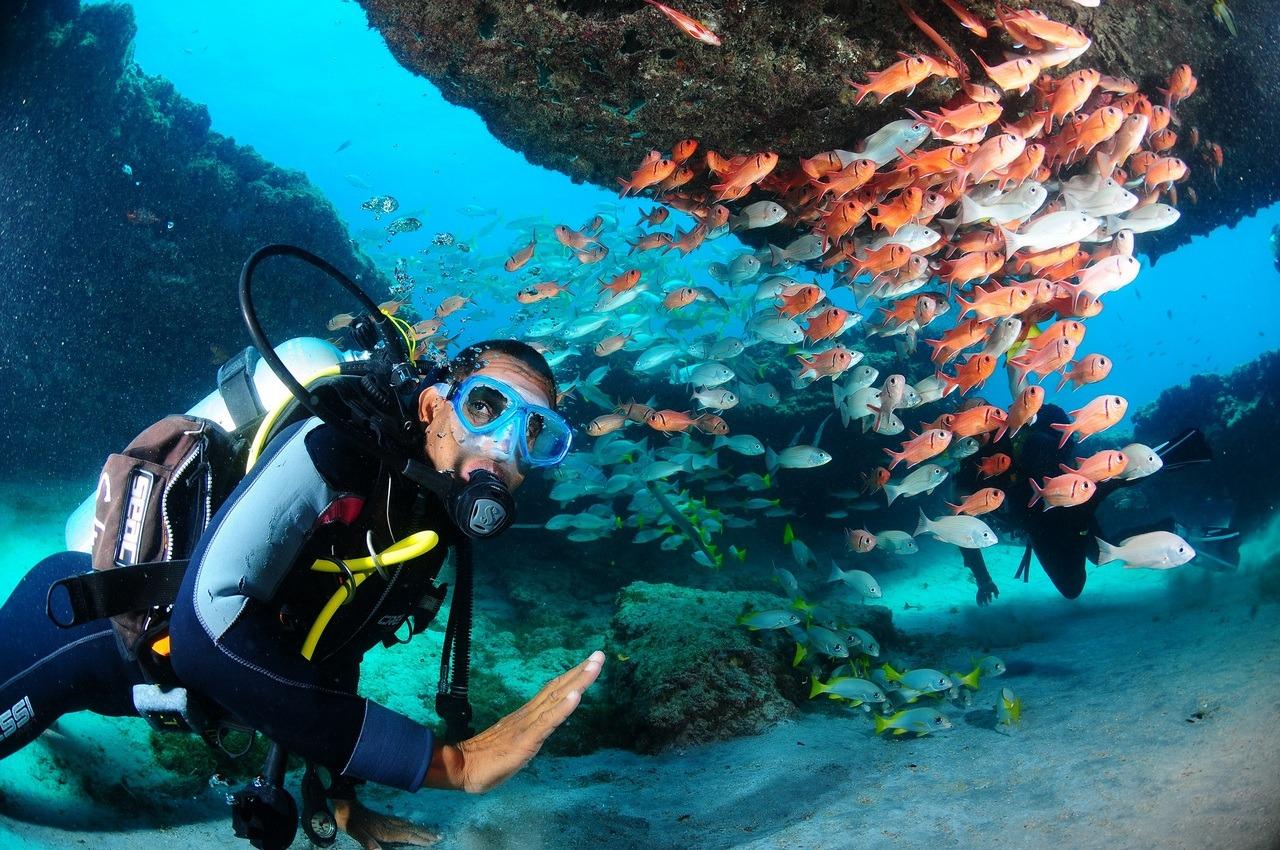 Centre Padi situé à Santa Maria, formation pour tout niveau, 3 bateaux, plusieurs sites: 2 épaves, grottes, ancré et barrière de corail